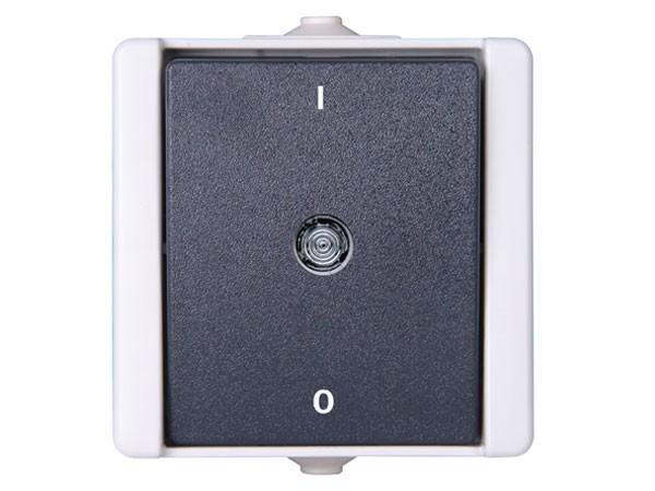 Ausschalter 2-polig beleuchtet IP44 AP-Feuchtraum Serie proAQA - Kopp grau (540256000)