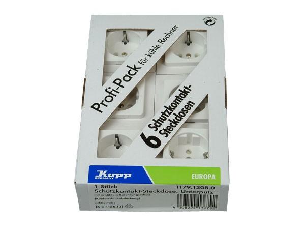 Profi-Pack: 6 x Schutzkontakt-Steckdose mit erhöhtem Berührungsschutz Serie Europa arktis-weiß Kopp