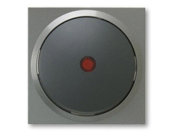 REV Ritter Düwi TerraLuxe Kontroll-Wechselschalter inkl. Glimmlampe, titan (01386)