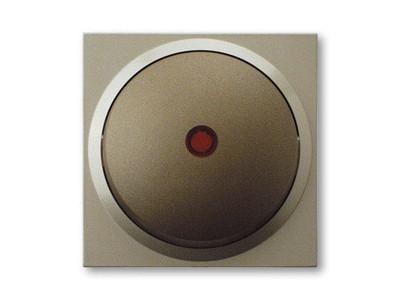 REV Ritter Düwi TerraLuxe Kontroll-Wechselschalter inkl. Glimmlampe, platin (01385)